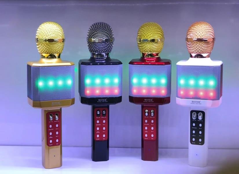 лучшие беспроводные микрофоны WSTER WS-1828