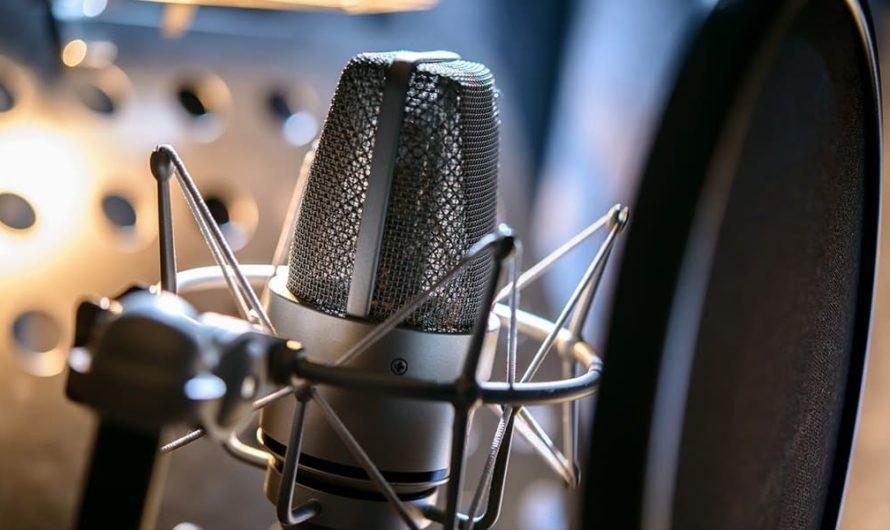 ТОП-10 Лучших бюджетных микрофонов 2020 года