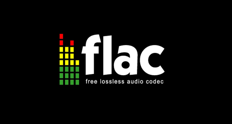 Что такое FLAC файл (Free Lossless Audio Codec)?🎧 Особенности работы кодека FLAC, сравнение с WAP и APE - FAQ от Earphones-Review